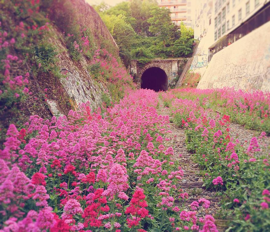 Позаброшенная железная дорога в центре города – Париж, Франция