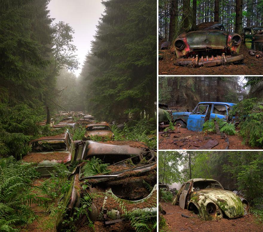 Ретро автомобильное кладбище – Бельгия