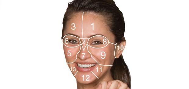 стандартная дерматологическая схема лица