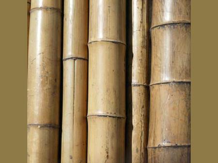 Распилите бамбуковую трость в 3 м на две части