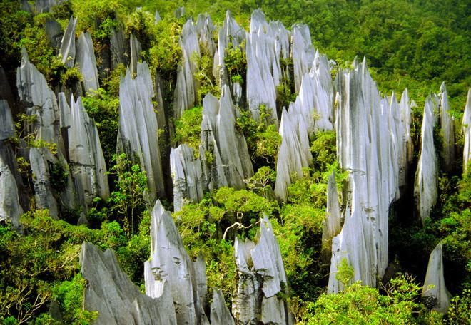 Как устроить незабываемый уикенд на острове Борнео (Калимантан)?