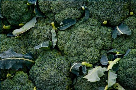 При верном приготовлении брокколи не только полезна, но и очень вкусна