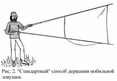 Как поймать летучую мышь