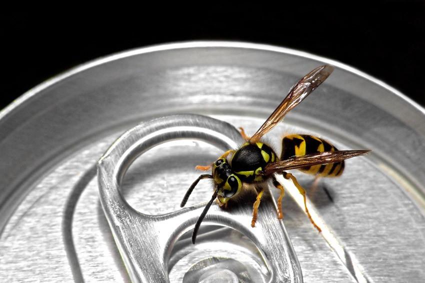 Как использовать Coca-cola: 6 новых способов