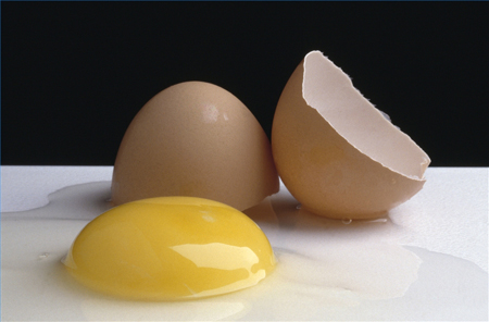 яйца – оказывается всего лишь отличные источники безвредных протеинов с низким содержанием жира