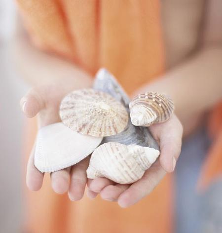 Используйте при декорировании помещения ракушки и камешки