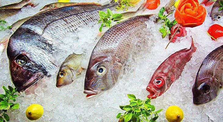 Как хранить свежую рыбу — Как сохранить рыбу свежей — Продукты питания