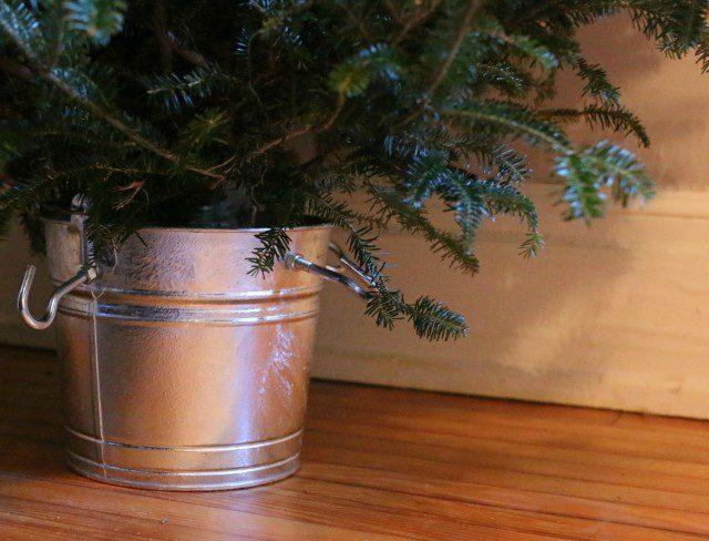 Как сделать устойчивую основу для новогодней елки?