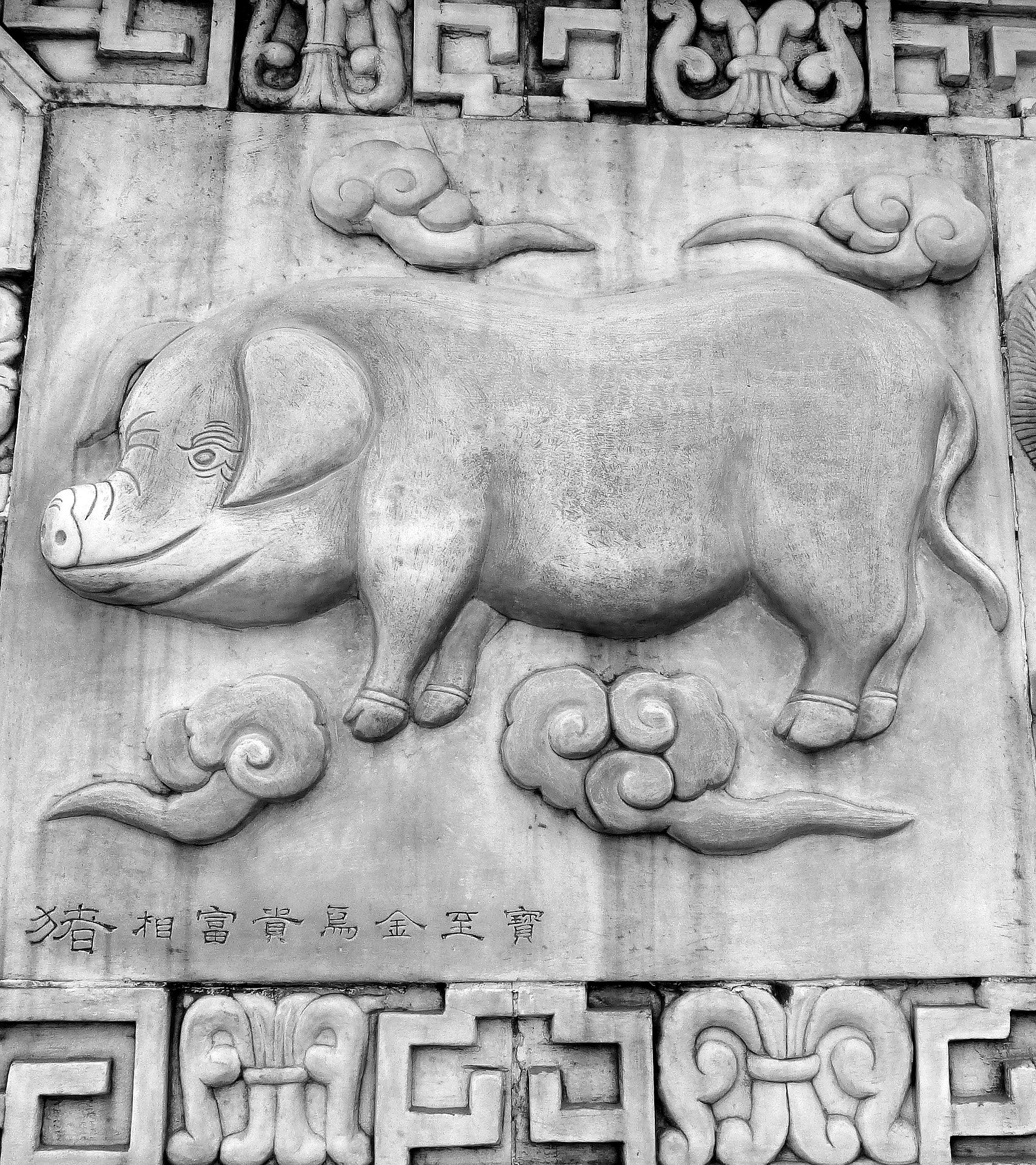 Знак китайского гороскопа