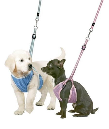 Когда щенки только начинают активно бегать вокруг и играть с другими собаками, нужно одевать на него шлейку из пересекающихся мягких кожаных полосок (или из ткани)