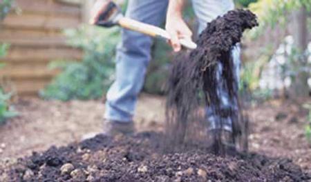 Вглубь выкопайте всего на 10-10,5 см от среднего уровня почвы на участке, окружающей патио