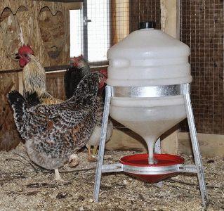поилки для куриц