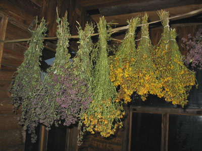Как выбор трав для бани влияет на организм