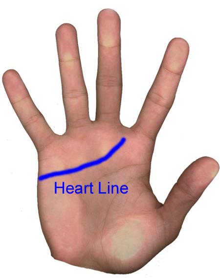 Давайте поищем линию сердца. Она начинается на левой стороне вашей ладони и по кривой изгибается вверх по направлению к вашему указательному пальцу