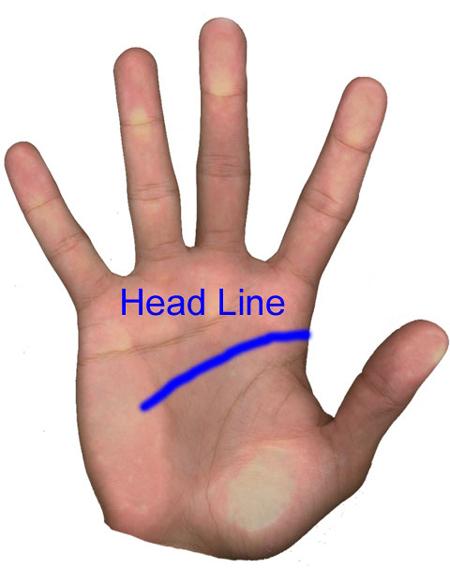 Находим линию ума. Она начинается на правой стороне руки и заканчивается примерно параллельно пальцу, на котором носят обручальное кольцо