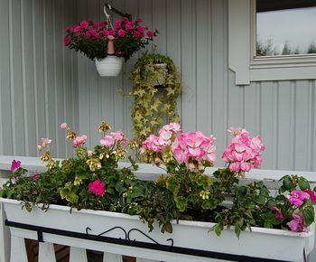 Как сделать цветник на балконе.