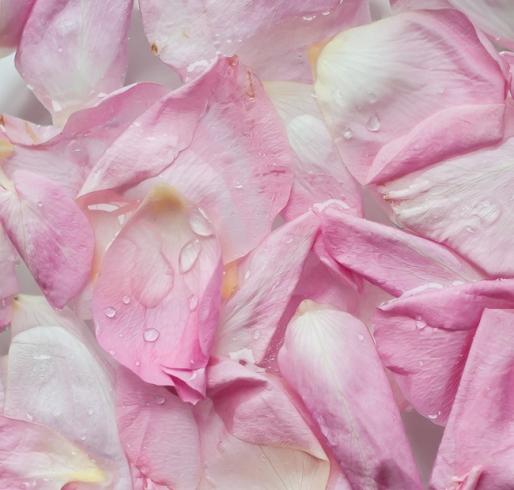 Как использовать лепестки роз в косметических целях