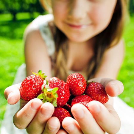 Обменяем на фрукты и овощи
