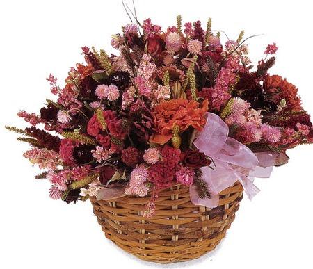 При составлении букетов, панно и других поделок с сухими цветами, помните, что растения должны гармонировать друг с...