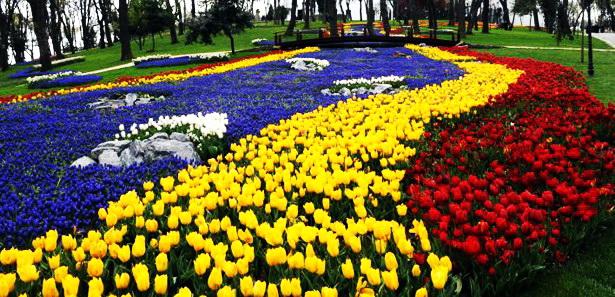 Как проходит апрельский фестиваль тюльпанов в Стамбуле (Турция)