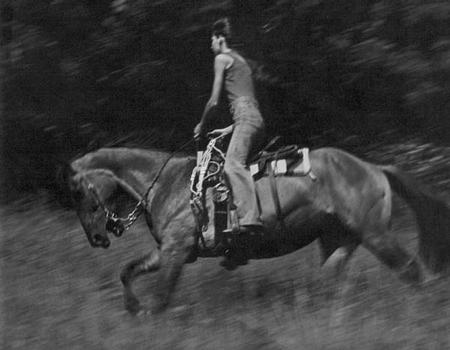 Не важно, куда вы смотрите или в каком направлении глаза ведут вас, вы увидите изображение коня и всадницы, незначительно смазанных из-за скорости действия