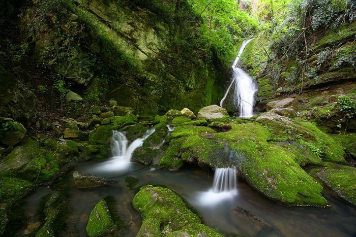 изумительные небольшие водопады среди зелени