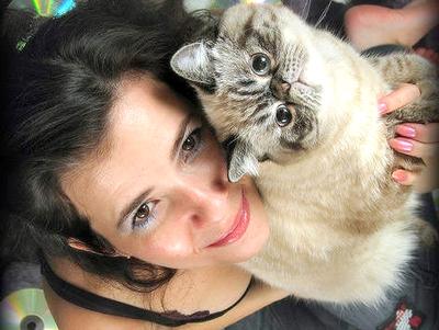 Как содержать персидских кошек