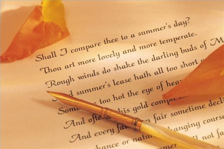 Сонет - поэма из четырнадцати строк