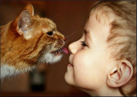 С домашним животным