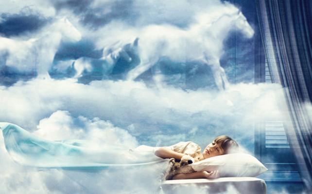 Как ученые столетиями изучают, зачем нужен сон