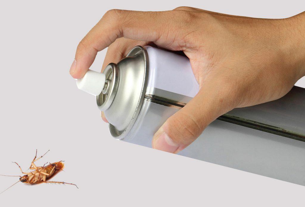 Как у тараканов развивается устойчивость к инсектицидам и что в этом случае предлагает «РАПТОР»